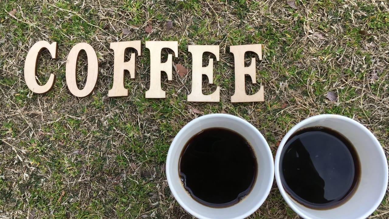 コーヒーフェスティバル