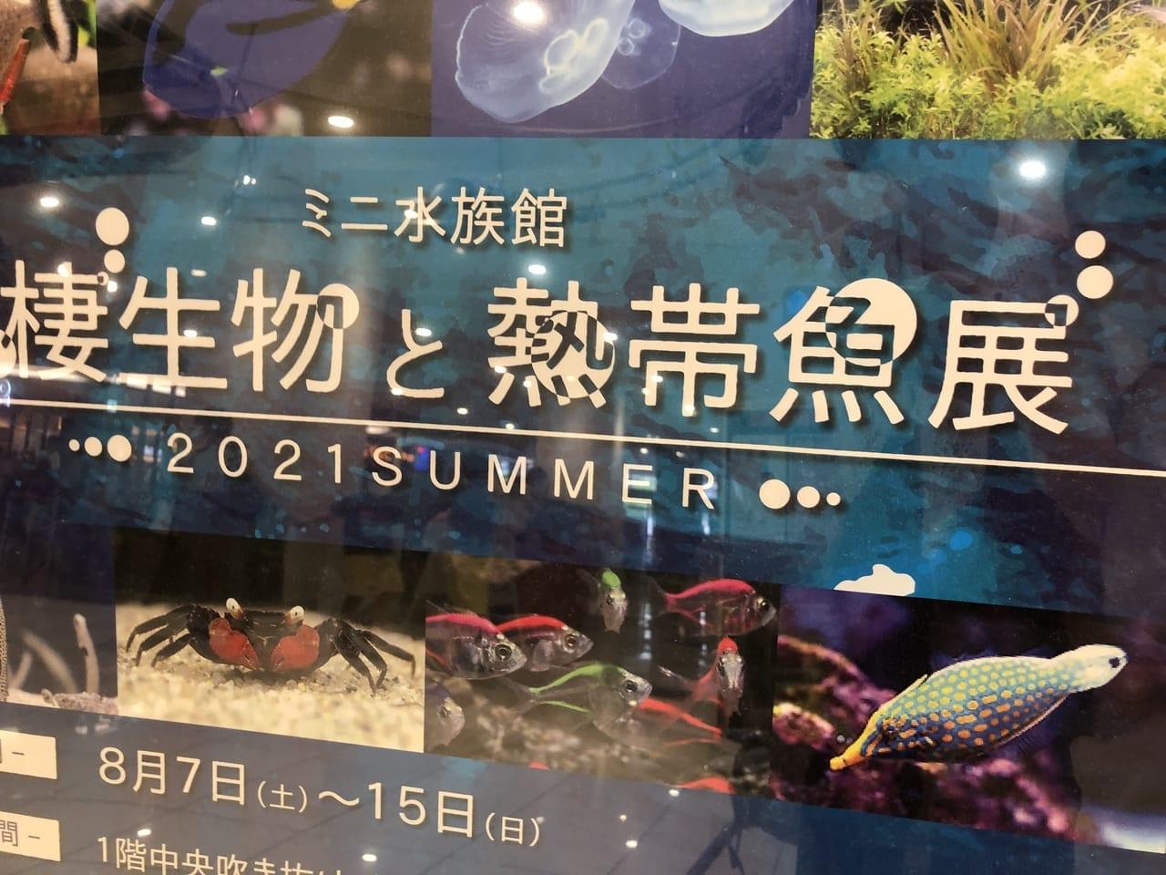 熱帯魚やちょっと変わった生物が見れる